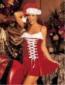 サンタ衣装コスチューム クリスマス ミニドレス