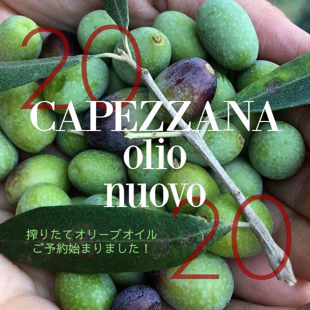 【ご予約】2019年産搾りたてオリーブオイルCAPEZZANA 500ml