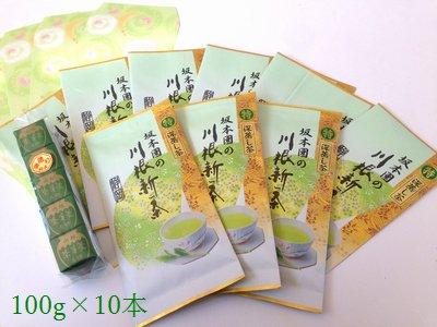 新茶 特 深蒸し茶100g平袋×10本 全国送料無料 茶羊羹付