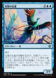 切望の孔雀/Coveted Peacock  U