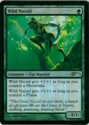野生のナカティル/Wild Nacatl