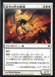 金切り声の猛禽/Shriek Raptor  C