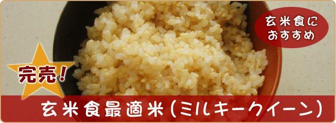 玄米食最適米(ミルキークイーン)10kg