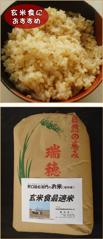玄米食最適米(ミルキークイーン)30kg