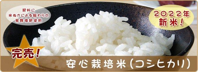 安心栽培米(コシヒカリ)10kg
