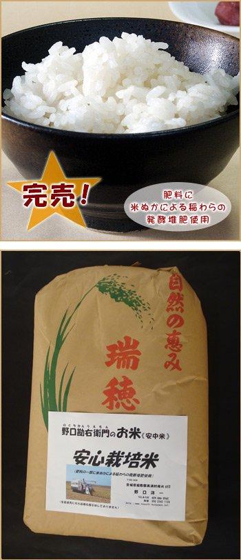 安心栽培米(コシヒカリ)30kg
