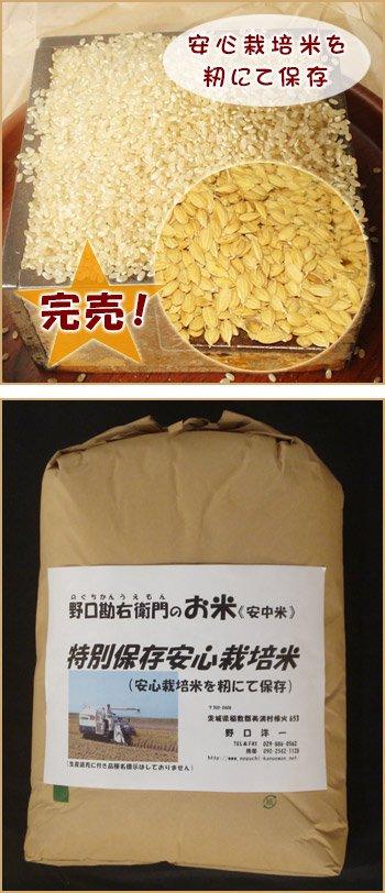 特別保存安心栽培米 (コシヒカリ)10kg