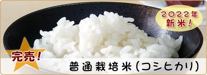 普通栽培米(コシヒカリ)30kg