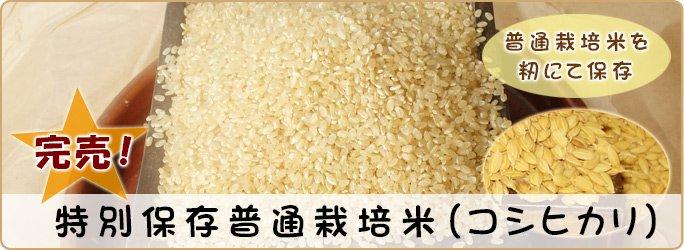 特別保存普通栽培米 (コシヒカリ)30kg
