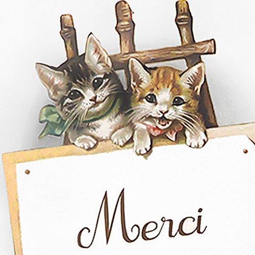 フランス ポストカード 猫 キャット (Merci)【画像3】