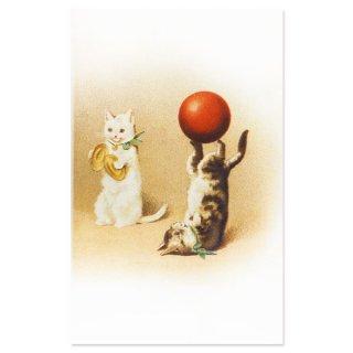 動物 アニマル柄 フランス ポストカード 猫 キャット (acrobatie)