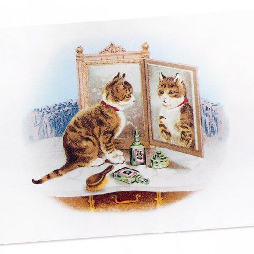 フランス ポストカード 猫 キャット (miroir)【画像2】