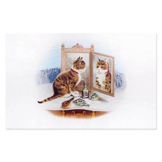 動物 アニマル柄 フランス ポストカード 猫 キャット (miroir)