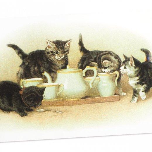 フランス ポストカード 猫 キャット (lait)【画像2】