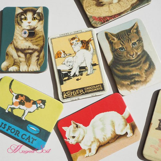 輸入マグネット 猫モチーフ【12枚set B-type】【画像3】