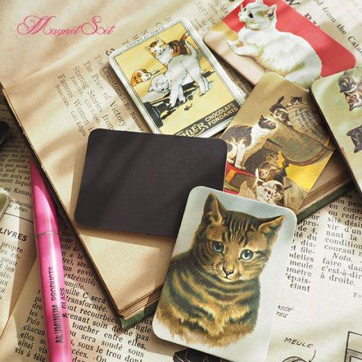 輸入マグネット 猫モチーフ【12枚set B-type】【画像6】