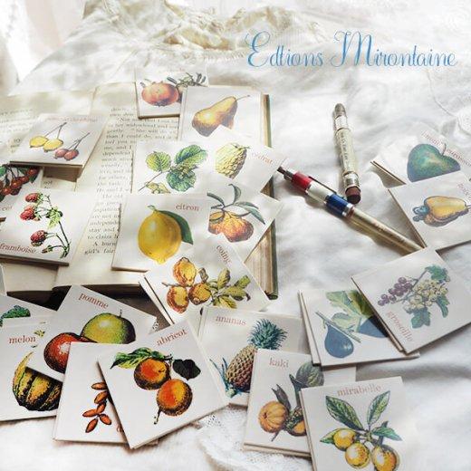 フランス 記憶力 カードゲーム メモワール【フルーツ】 Editions Mirontaine エディション ミロンテーン社【画像4】