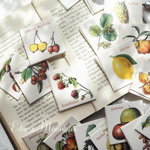 フランス 記憶力 カードゲーム メモワール【フルーツ】 Editions Mirontaine エディション ミロンテーン社【画像5】
