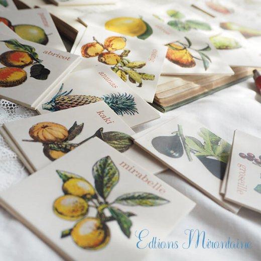 フランス 記憶力 カードゲーム メモワール【フルーツ】 Editions Mirontaine エディション ミロンテーン社【画像6】