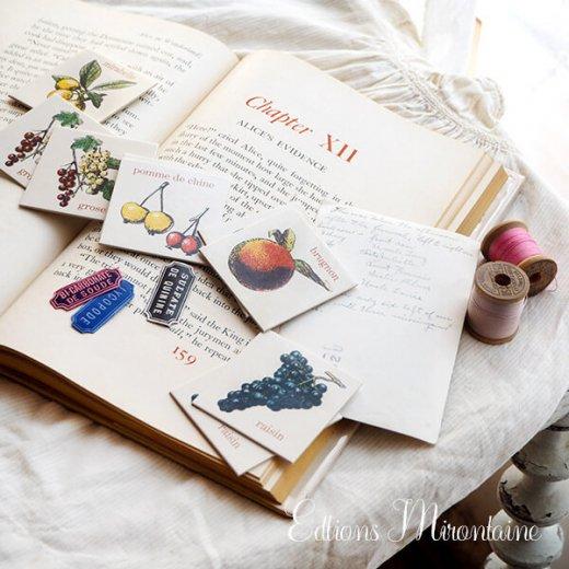 フランス 記憶力 カードゲーム メモワール【フルーツ】 Editions Mirontaine エディション ミロンテーン社【画像10】