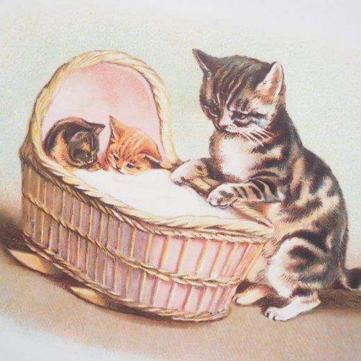 フランス ポストカード 猫 キャット (lit d'enfant)【画像3】