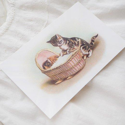 フランス ポストカード 猫 キャット (lit d'enfant)【画像4】