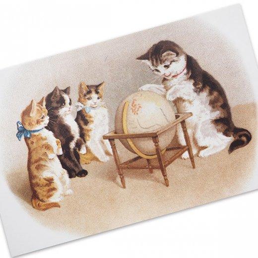 フランス ポストカード 猫 キャット (un globe terrestre)【画像2】
