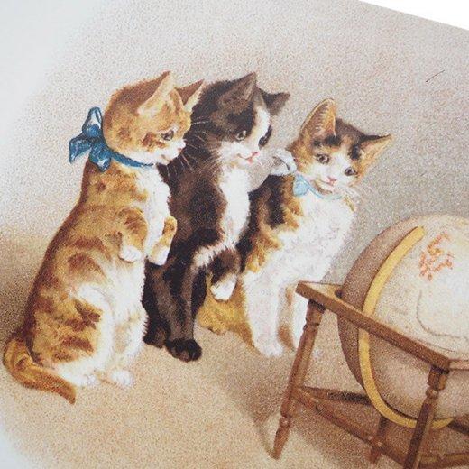 フランス ポストカード 猫 キャット (un globe terrestre)【画像3】