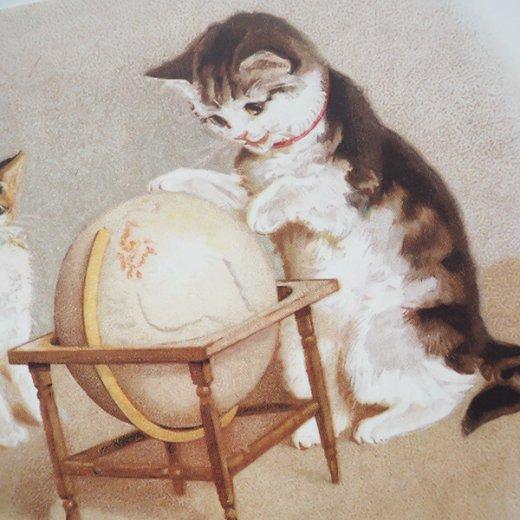 フランス ポストカード 猫 キャット (un globe terrestre)【画像4】