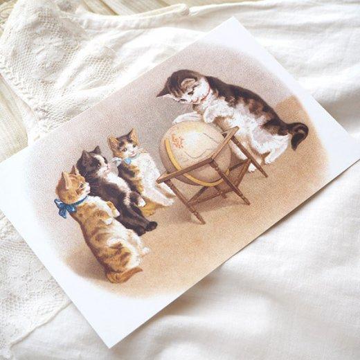フランス ポストカード 猫 キャット (un globe terrestre)【画像5】