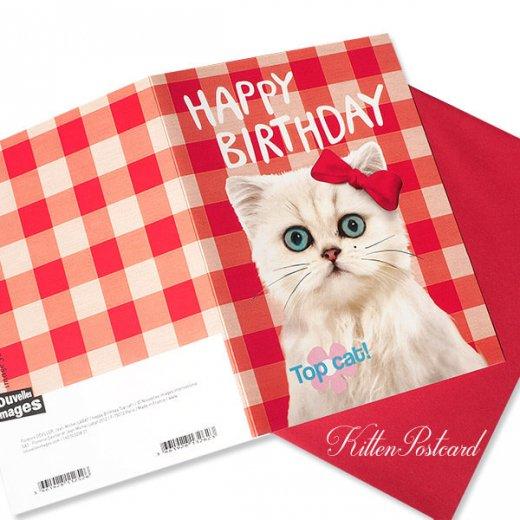 フランス 二つ折り バースデーカード 【封筒付き】 猫 キャット(マリリン)【画像4】