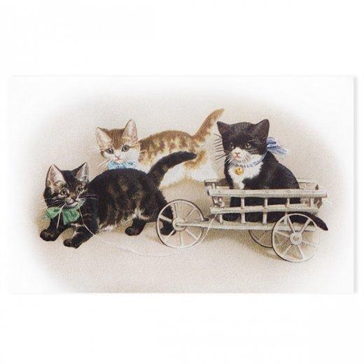 フランス ポストカード 猫 キャット (Bogie)