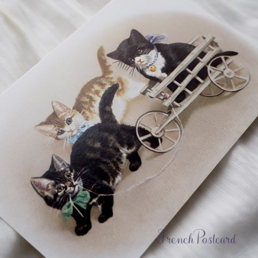 フランス ポストカード 猫 キャット (Bogie)【画像4】