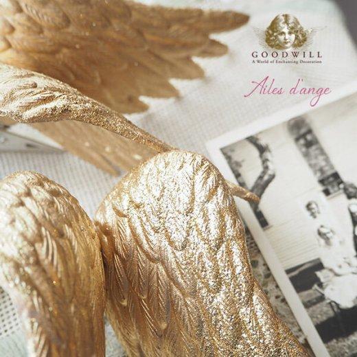 グッドウィル GOODWILL ベルギー直輸入 オーナメント 【天使の翼 Ailes d'ange】クリスマス・バレンタインデー【画像5】