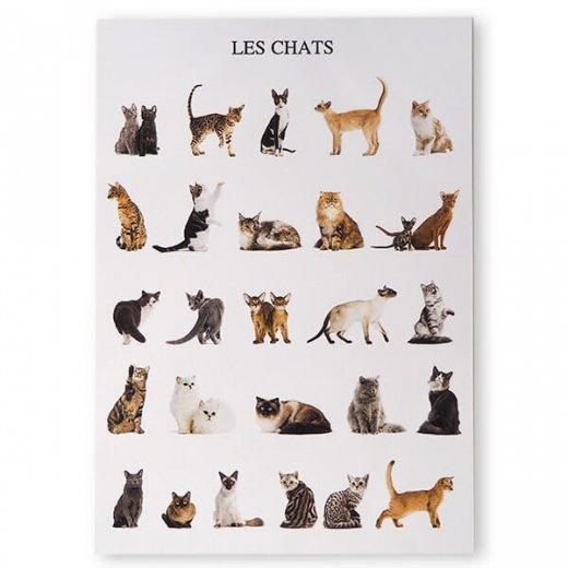 フランス ポストカード(LES CHATS)