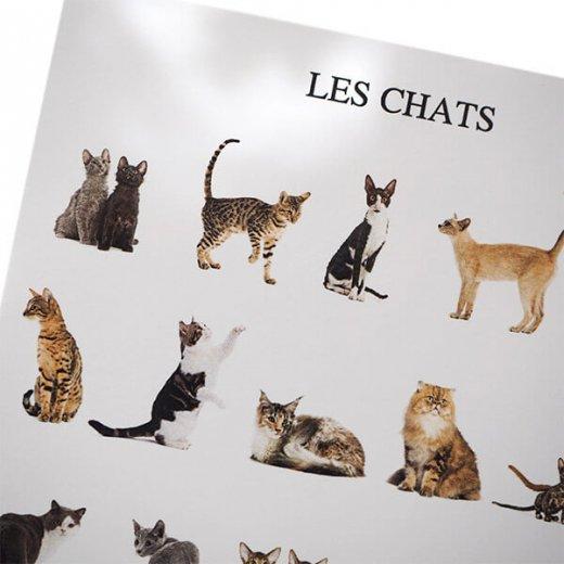 フランス ポストカード(LES CHATS)【画像2】