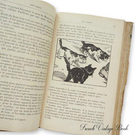 フランス蚤の市より 1918年発行 アンティーク本 ローズ (Les troisiemes lectures des petites filles)【画像6】