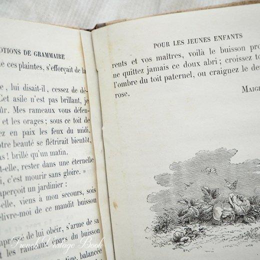 フランス蚤の市より 1879年発行 アンティーク本 (De grammaire)【画像8】
