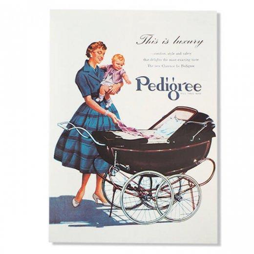 イギリス アドバタイジング ポストカード(pedigree baby carriage)