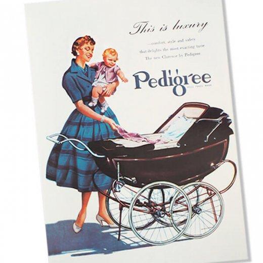 イギリス アドバタイジング ポストカード(pedigree baby carriage)【画像2】