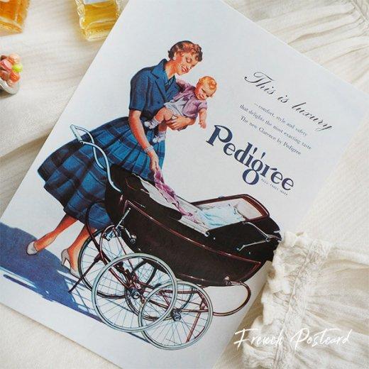 イギリス アドバタイジング ポストカード(pedigree baby carriage)【画像3】