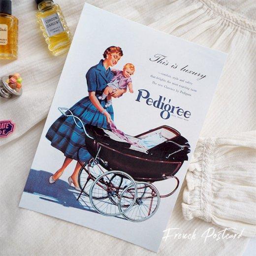 イギリス アドバタイジング ポストカード(pedigree baby carriage)【画像4】