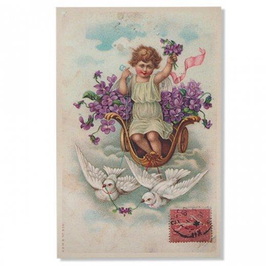 フランス ポストカード スミレ Pigeon et ange【幸福の鳩 天使】