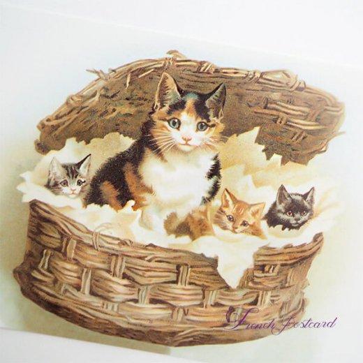 フランス ポストカード 猫 キャット  (lit d'enfant B)【画像2】