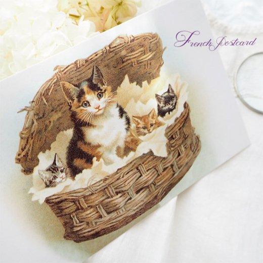 フランス ポストカード 猫 キャット  (lit d'enfant B)【画像4】