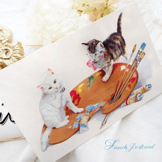 フランス ポストカード 猫 キャット  (couleurs)【画像3】