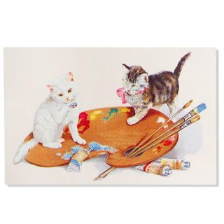 フランス ポストカード 猫 キャット  (couleurs)