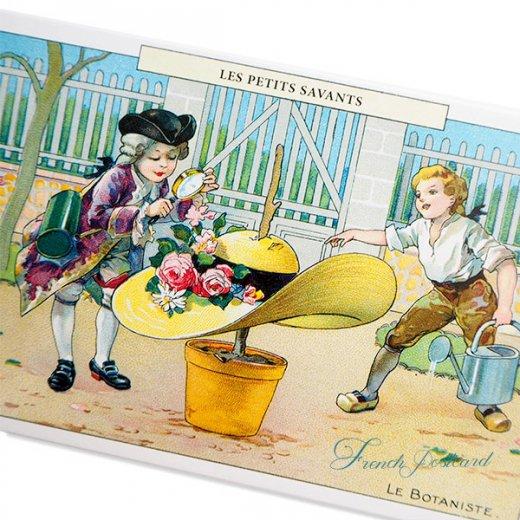 フランス ポストカード  (LES PETITS SAVANTS〜 小さな知識 〜A)【画像2】
