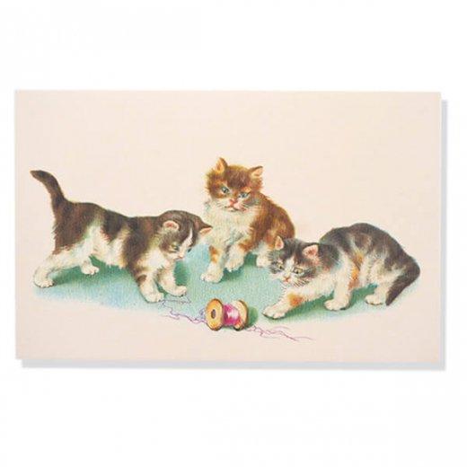 フランス ポストカード  (Vilain chat いたずら猫 子猫)