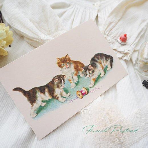 フランス ポストカード  (Vilain chat いたずら猫 子猫)【画像3】